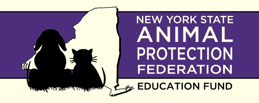 NYSAPF Education Fund